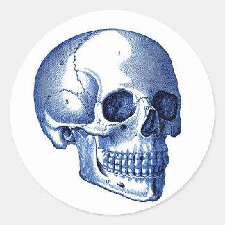 Vintage Skull Anatomy Classic Round Sticker