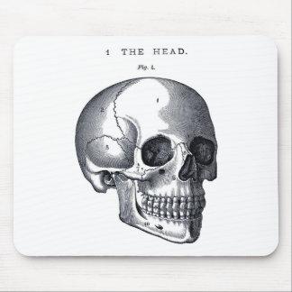 Vintage Skull Anatomy Mouse Pad