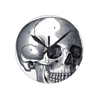 Vintage Skull Anatomy Round Clock