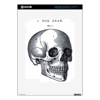 Vintage Skull Anatomy Decals For iPad 3