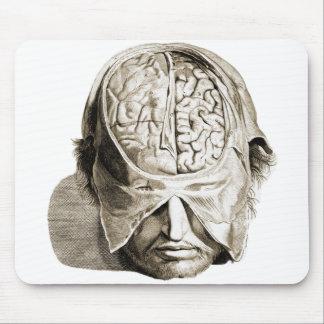 Vintage Skull Brain Medical Illustration Brains Mouse Pad