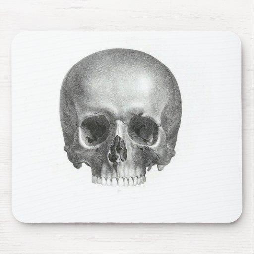 Vintage Skull Mouse Pads