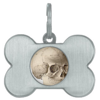 Vintage Skull Pet ID Tag