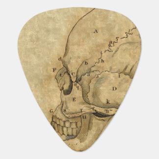 Vintage Skull Profile Engraving Lettered Guitar Pick