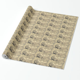 Vintage Skull Wrapping Paper