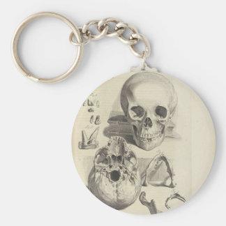 Vintage Skulls Keychain