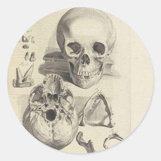 Vintage Skulls Round Stickers
