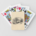 Vintage Skunk 1800s Skunks Illustration Template Bicycle Playing Cards