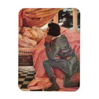 Vintage Sleeping Beauty by Jessie Willcox Smith Rectangular Photo Magnet