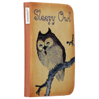 Vintage Sleepy Owl Case For Kindle