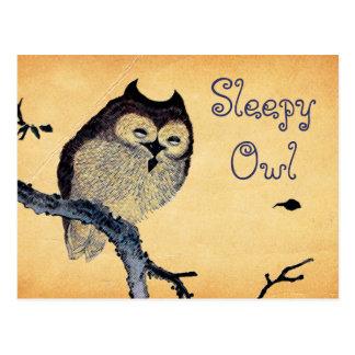 Vintage Sleepy Owl Postcard