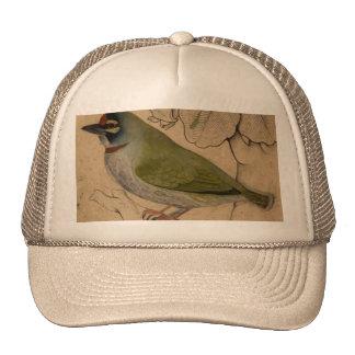 Vintage Small Bird Painting Trucker Hat