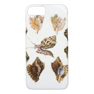 Vintage Snails and Mollusks, Marine Life Organisms iPhone 8/7 Case