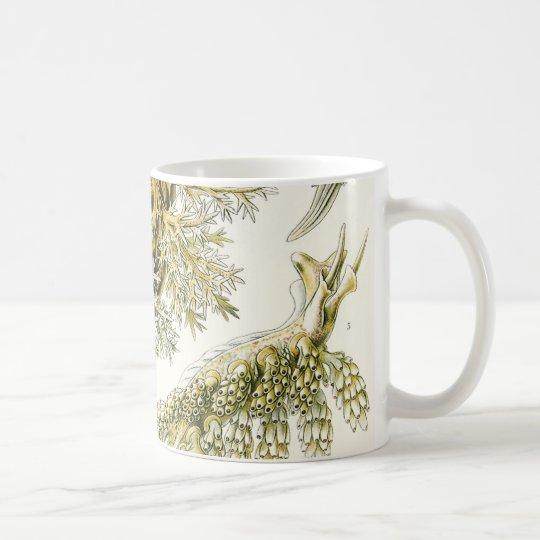 Vintage Snails and Sea Slugs by Ernst Haeckel Coffee Mug