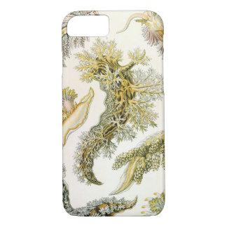 Vintage Snails and Sea Slugs by Ernst Haeckel iPhone 7 Case