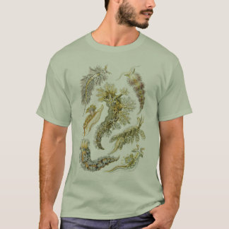 Vintage Snails and Sea Slugs by Ernst Haeckel T-Shirt