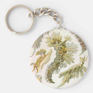 Vintage Snails and Sea Slugs, Marine Life Animals Basic Round Button Keychain