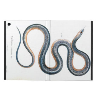 Vintage snake drawing victorian art nouveau snake iPad air cover