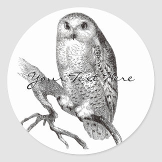Vintage Snowy Owl Stickers