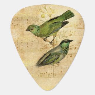 Vintage Song Bird Green Gold Music Notes Guitar Pick