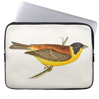 Vintage Song Bird Illustration - 1800's Birds Computer Sleeve