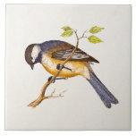 Vintage Song Bird Illustration -1800's Birds Large Square Tile
