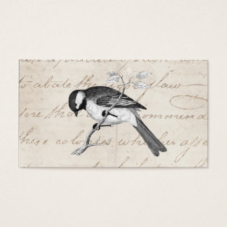 Vintage Song Bird Illustration - 1800's Birds Text Business Card