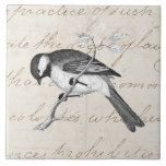 """Vintage Song Bird Illustration -&#160;1800&#39;s Birds Text Tile<br><div class=""""desc"""">Custom Template For Large Ceramic Tiles - Customized Tile Templates. Personalize with your own name, pattern, design, quote, monogram, or photograph. Use our cool templates, artwork, photos, graphics, and illustrations, then add names, text, quotes, and monograms to create your own ceramic tile. Click the &quot;Customize it!&quot; button to make it...</div>"""
