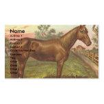 Vintage Sorrel Horse Double-Sided Standard Business Cards (Pack Of 100)