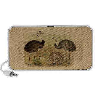 Vintage South American Rhea Birds Speaker