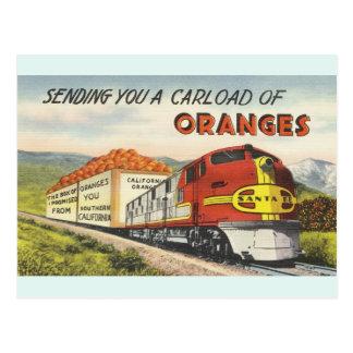 Vintage Southern California Oranges Postcard