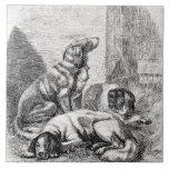 Vintage Spaniel Dogs 1800s Spaniels Illustration Ceramic Tiles
