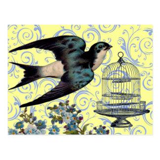 Vintage Sparrow & Cage Postcard
