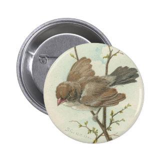 Vintage Sparrow Pinback Button