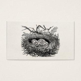Vintage Speckled Eggs Bird Nest Personalized Birds Business Card