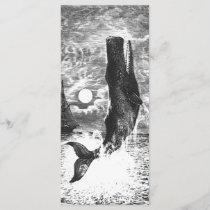 Vintage Sperm Whale Breaching, Marine Life Animals