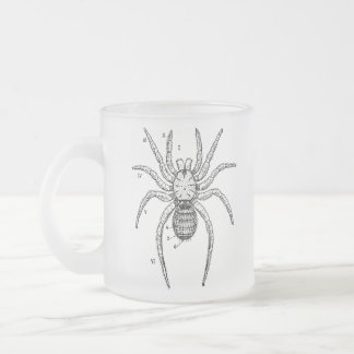 Vintage Spider Diagram Frosted Glass Coffee Mug