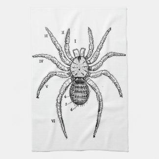 Vintage Spider Diagram Kitchen Towel