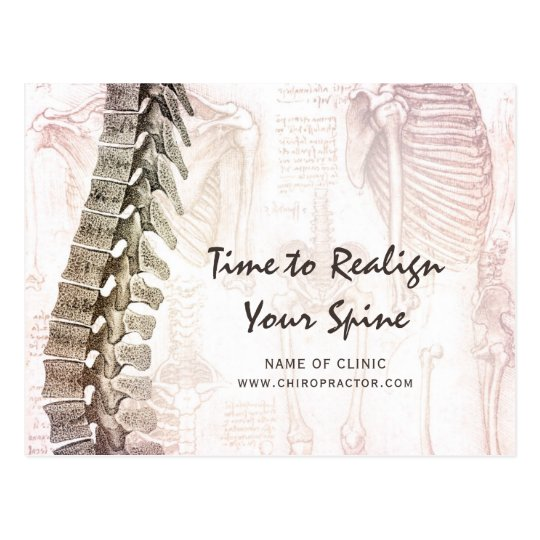 Vintage Spine Chiropractor Appointment Reminder Postcard Zazzle
