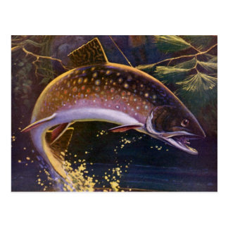 Vintage Sports Trout Fishing; Catch and Release Post Cards