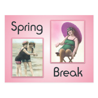 Vintage Spring Break Beach Babes Postcard