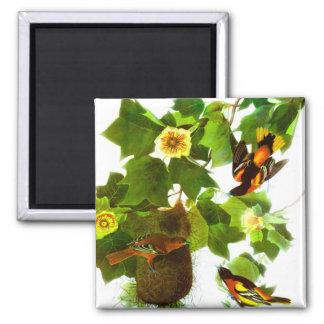 Vintage Spring Day Birds & Flowers 2 Inch Square Magnet