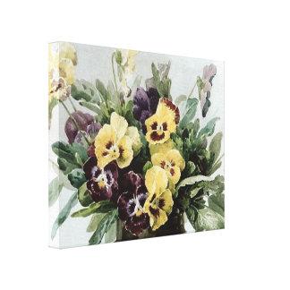 Vintage Spring Pansies Canvas Print