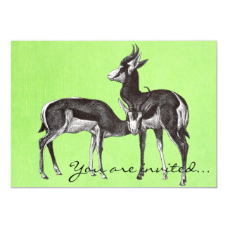 Vintage Springbok Invitations