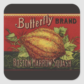 Vintage Squash Country Farm Vegetable Graphic Square Sticker