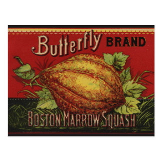 Vintage Squash Label Antique Vegetable Advertising Postcard
