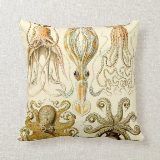 Vintage Squid Octopus Gamochonia by Ernst Haeckel Pillows