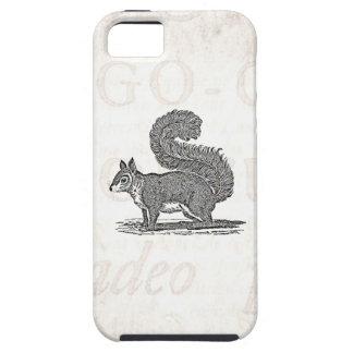 Vintage Squirrel Illustration -1800's Squirrels iPhone 5 Cases
