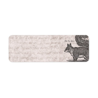Vintage Squirrel Illustration - 1800's Squirrels Label