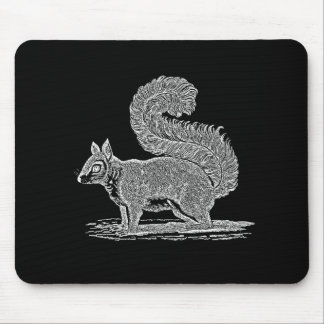 Vintage Squirrel Illustration -1800's Squirrels Mousepad